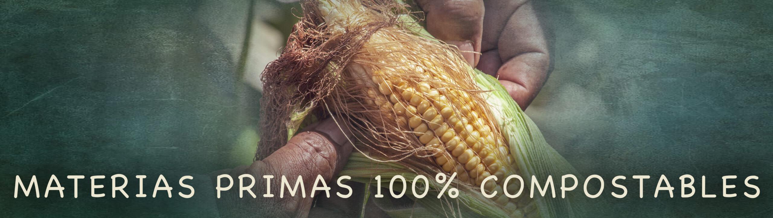 Bionatic Spain solo trabaja con materias primas 100% ecológicas y biodegradables, como la hoja de palma o palmera, cartón y papel recilcados y reciclables, envases de bagazo o caña de azúcar, Pla y vasos de cartón sin Pla ni plásticos. En Bionatic siempre seleccionamos productos de primera calidad y ofrecemos a nuestros clientes una gama muy amplia e interesante de envases para alimentación 100% ecológicsos